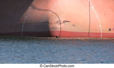 Birds Take Flight In Front Of Ship - A Bird Takes Flight In...