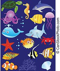 mar, vida, caricatura