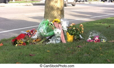 Accident Memorial With Traffic - Flowers lay against a tree...