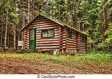 Rustic Old Log Cabin - Log cabin surrounded by the forest at...