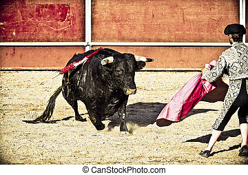 Matador and bull in bullfight. Madrid, Spain. - Torero and...