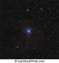The Iris Nebula, NGC 7023 - The Iris is a bright reflection...