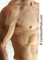 Nude man - Detailed portrait of a nude male torso with focus...