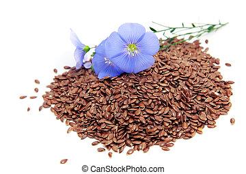 Linum usitatissimum flowers and seeds - Linum usitatissimum...