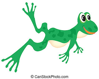 Drawing of the green frog on white