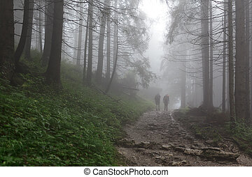 Scary Forest - Boy and girl walking in the foggy forest.