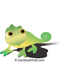 Chameleon illustration - On a white background the chameleon...
