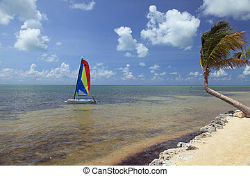 Beautiful beach in the Florida Keys