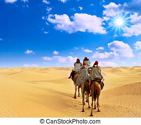 camel caravan at desert - Camel caravan at desert.