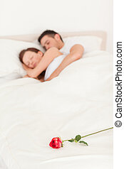 Rose on a bed of sleeping happy couple