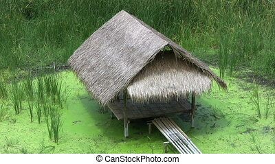 Bamboo Grass Hut Over A Swamp - A lovely grass hut made of...