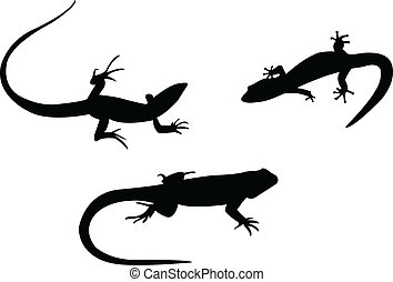 Lizards silhouettes - vector