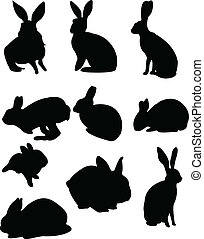 Collection of rabbits - vector