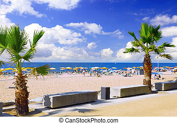 Beaches, coast in Spain - Beaches, coast in Spain near...