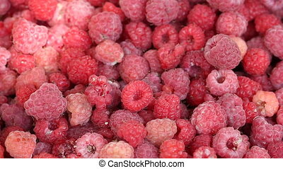 Lot of raspberries yield panning background