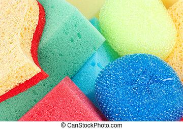 sponges close up