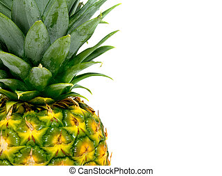 ripe pineapple background with with room for text