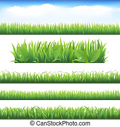 Green Grass And Leafs Set, Isolated On White Background,...