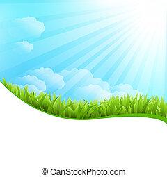 Illustration Of Summer Grass