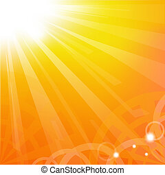 Sunburst, Vector Illustration