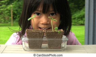 Asian Girl Admiring Her Plants - A cute little Asian girl...