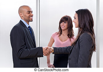 Business woman shaking hands with her partner - Business...