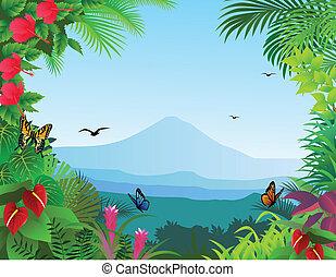 tropikalny, las, tło