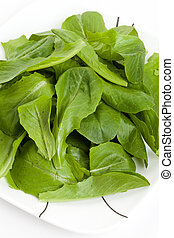 Salad Spinach for background