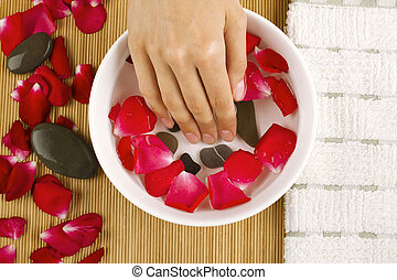 Body Care - Close-up of girls hand dropped into a saucer of...