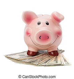 Money accumulation concept - Money and piggy bank isolated...