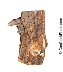 Birch logs isolated on the white background.