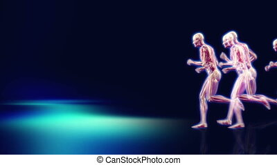 Anatomy Marathon - 3d dolly shot of an x-ray man running,...