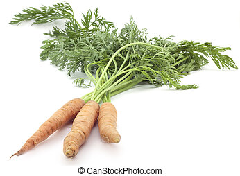 carrots with stems on white background