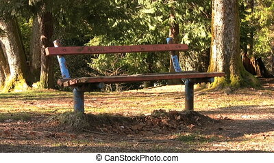 Old Park Bench - An old park bench sits lonely and forgotten...
