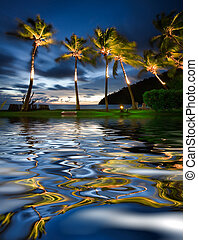 Tropical holiday - Palm trees move in the breeze with water...