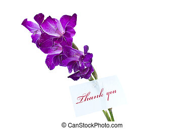 quot;thank youquot; - say thank you on a background of...