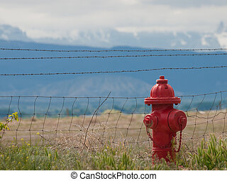 Fire Hydrant - Red fire hydrant on background of...