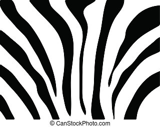 zebra texture Black and White