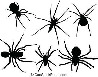 Spiders collection - vector