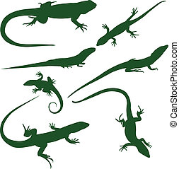 Lizards silhouettes collection - vector