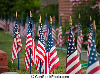 American flags - Lawn flags with morning sunshine in...