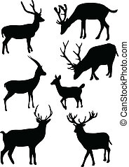 Collection of deers