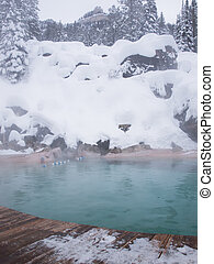 Hot springs - Granite Hot Springs in the snow near the...