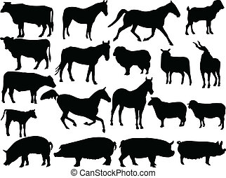 farm animal 2 - vector - illustration of farm animal 2 -...