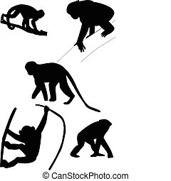 Monkeys silhouettes - vector