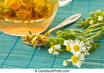 chamomile tea on a background of fresh beautiful daisies