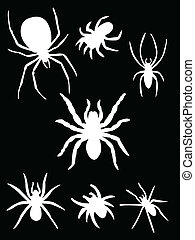 white spider - Collection of spiders on black background...