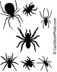 Spiders silhouette - vector