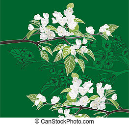 Pattern of flowering branches of apple on a green background