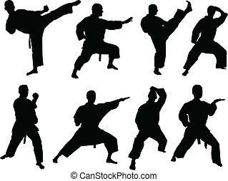 karate collection - vector - illustration of karate...
